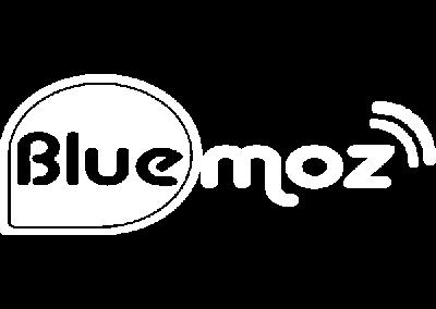 Bluemoz logo