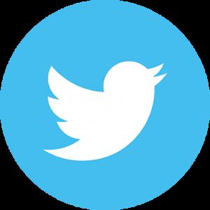 Logo Twitter 2 cerchio